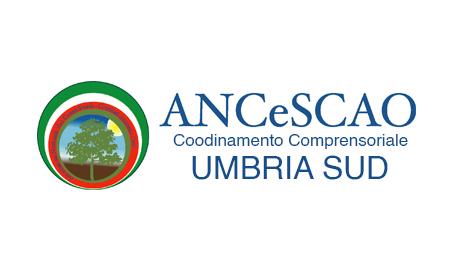 logo-ancescao